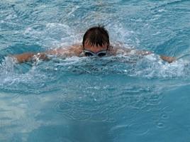 Delfinschwimmen - © Maria Lanznaster / pixelio.de