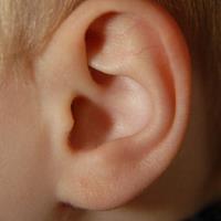 Ohr eines Kindes - © Ingo Sturm / pixelio.de